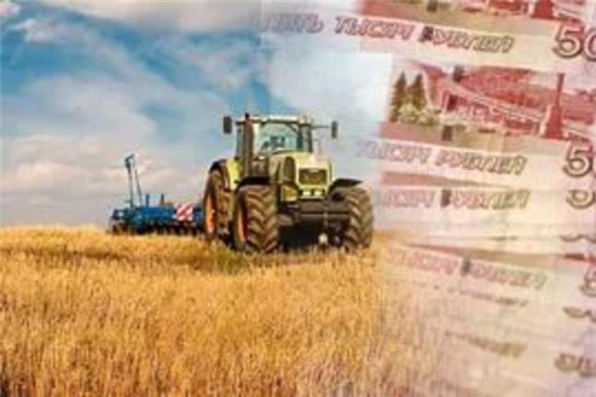 Кабмин РФ обсудит компенсации на 476,5 млн рублей аграриям ущерба от ЧС