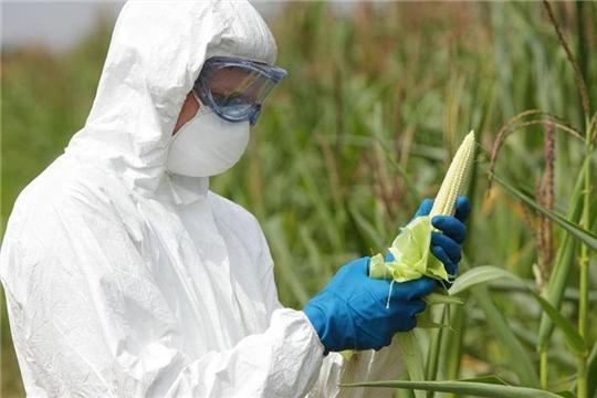 Законопроект о наделении Россельхознадзора правом контроля пестицидов согласован