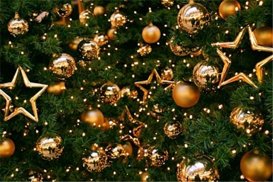 Поздравление Министра сельского хозяйства Дмитрия Патрушева с Новым годом и Рождеством
