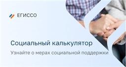 Социальный калькулятор ЕГИССО