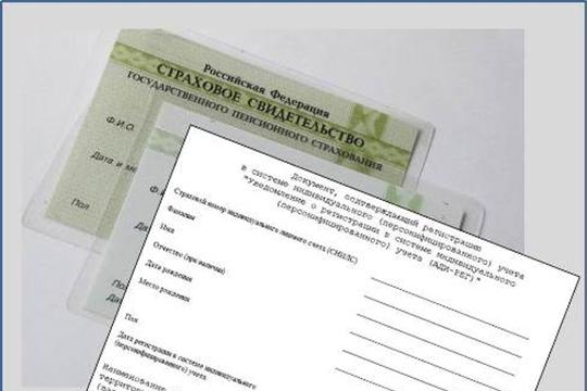 Опубликована форма документа, которая заменит карточку СНИЛС