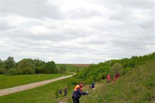 Жители Моргаушского района активно приняли участие во Всероссийской акции «Живи, лес!»