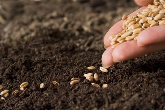 На 16 декабря проверено 42,4 тысячи тонн семян для ярового сева
