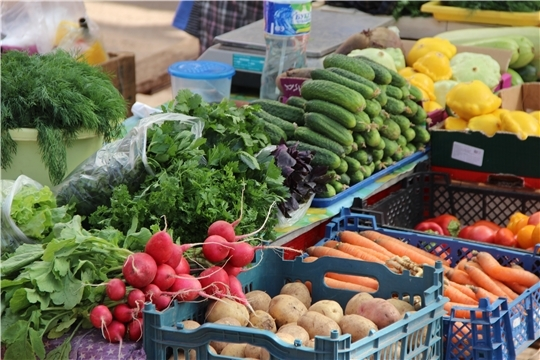 """Ярмарка """"Дары осени - 2019"""": реализовано порядка 100 тонн молодого картофеля и более 15 тонн сезонных овощей"""