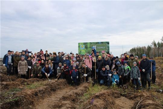 Более 150 человек приняли участие в акции, инициированной «Советом отцов Чувашии», по посадке леса в Заволжье