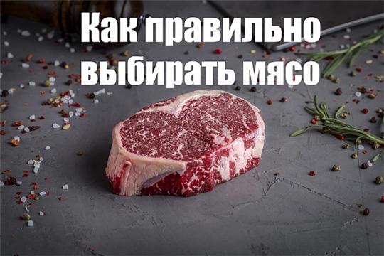 Памятка при выборе мяса