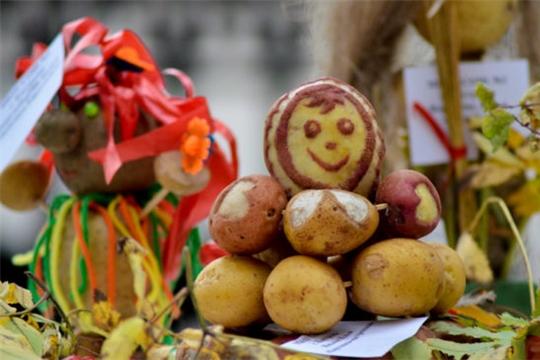 17 октября в районном центре села Комсомольское состоится II районный фестиваль картошки «Ах улмаçӑм-çĕрулми» (Картофельный разгуляй)
