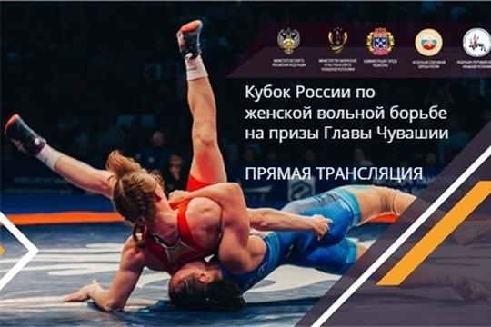 Организована прямая интернет-трансляция Кубка России по женской вольной борьбе