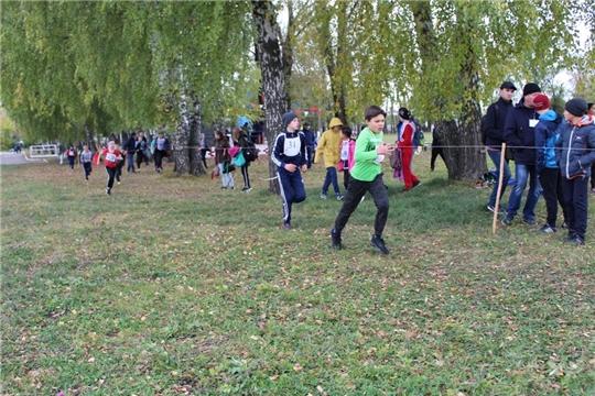 В Урмарах состоялись республиканские соревнования по легкоатлетическому кроссу памяти Н.И. Пуклакова