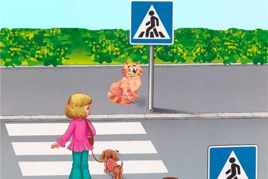 ГИБДД проводит профилактические мероприятия «Пешеход, пешеходный переход»