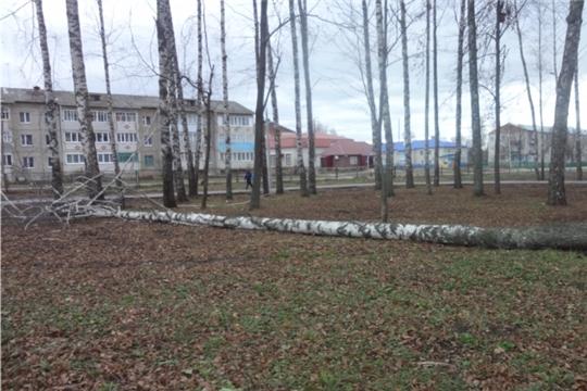Администрация Урмарского городского поселения сообщает