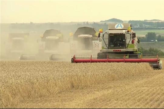 Фильм ко Дню работников сельского хозяйства и перерабатывающей промышленности
