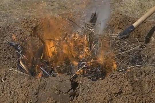 Правила использования открытого огня на землях сельскохозяйственного назначения
