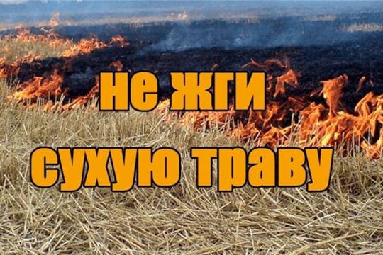 На территории Чебоксарского района с 25 апреля 2019 года будет введен противопожарный режим