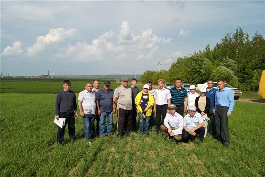 В Чебоксарском районе прошла приемка посевов
