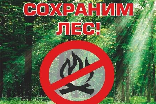 Природоохранная прокуратура напоминает о правилах пожарной безопасности в лесах в условиях особого противопожарного режима