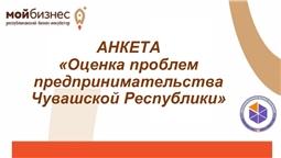 «Анкетирование по теме «Оценка проблем предпринимательства в Чувашской Республике»