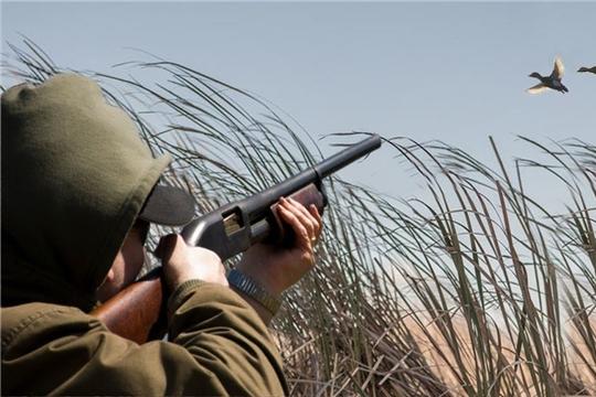 Об ограничении охоты на территории Чувашской Республики