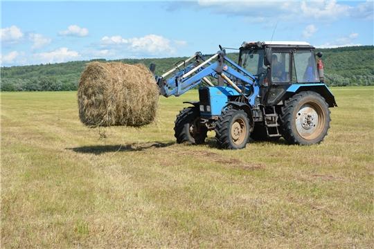 В Чебоксарском районе продолжается заготовка кормов