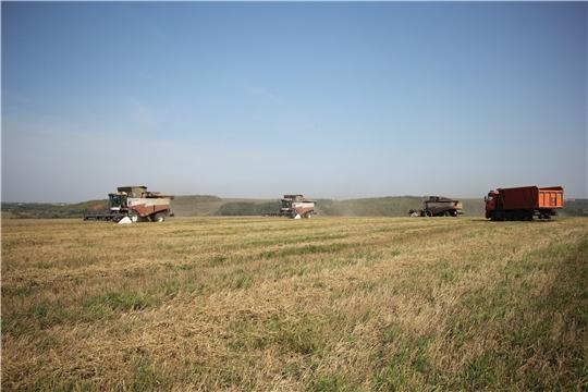 В Чебоксарском районе завершается уборка зерновых