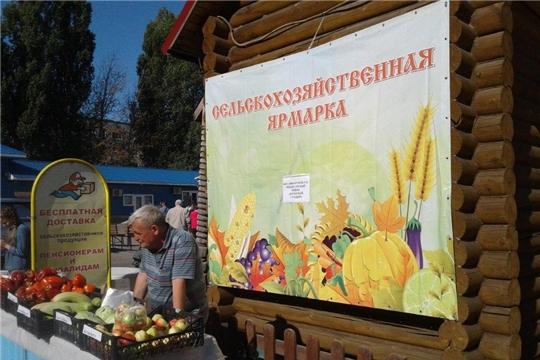 В выходные стартовала ярмарка сельскохозяйственной продукции «Дары осени – 2019»