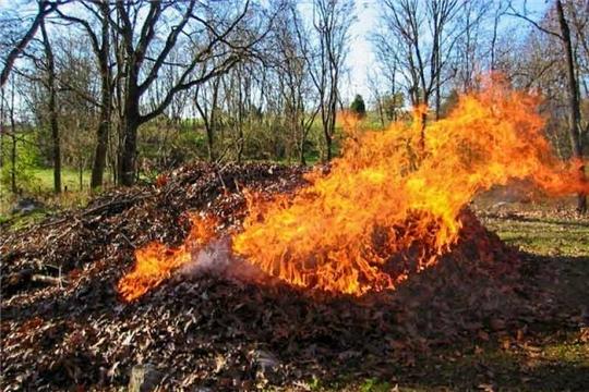 Сжигать листву – опасно