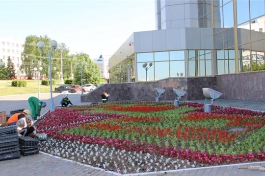 В Чебоксарах в юбилейный год стартовал конкурс «Цветами улыбается наш город»