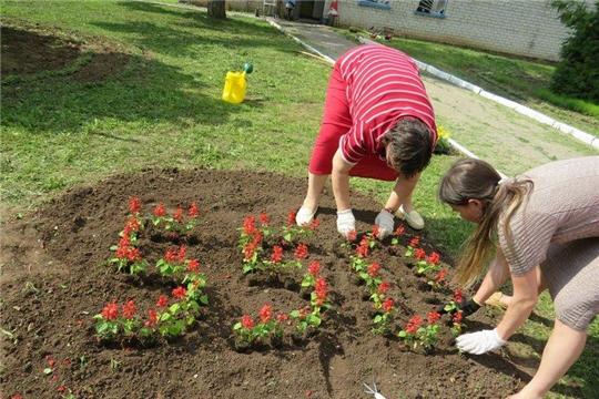 К 550-летию г. Чебоксары: жители Калининского района участвуют в конкурсе «Цветами улыбается наш город»