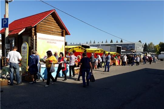 В Чебоксарах открылись ярмарки «Дары осени – 2019»