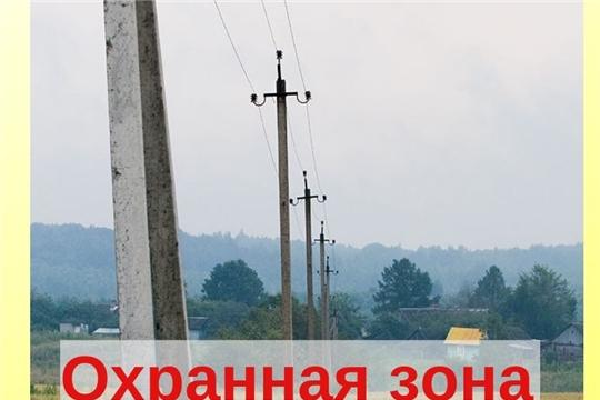 Что делать, если на твоем участке стоят электрические столбы?
