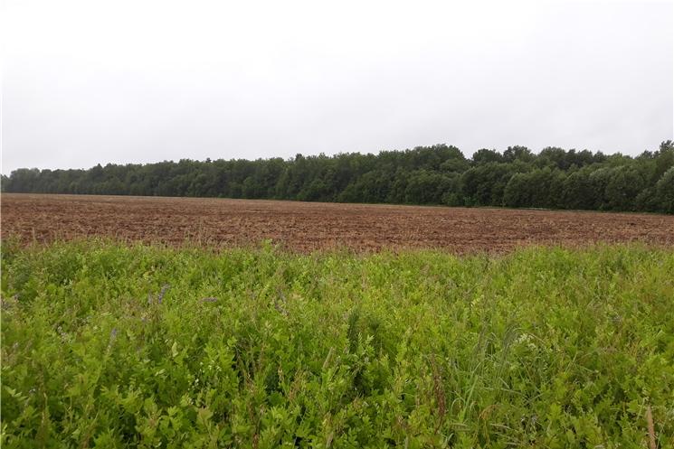 Контроль за целевым использованием сельхозземель – в центре внимания