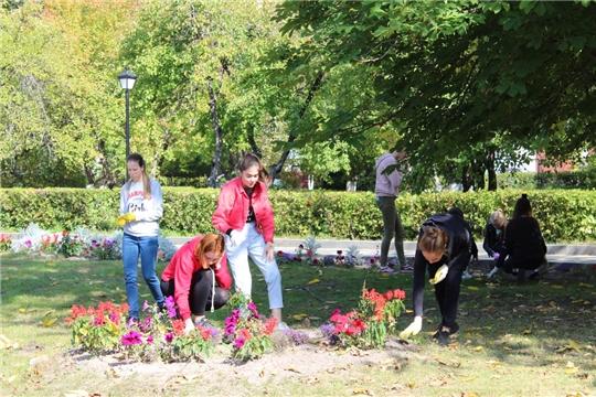 Экологические субботники в горордском парке