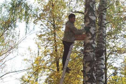В парке культуры и отдыха города Шумерля установлено видеонаблюдение