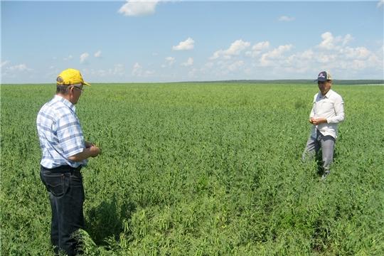 В сельскохозяйственных предприятиях Ибресинского района продолжается подготовка к уборочным работам