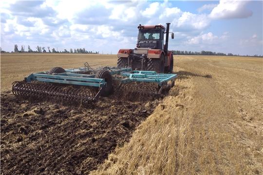 В Ибресинском районе продолжается уборка зерновых культур