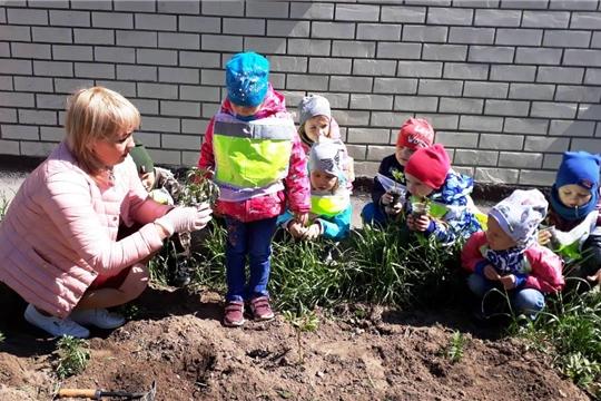 «Цветами улыбается наш город»: дошколята облагораживают Чебоксары к 550-летнему юбилею