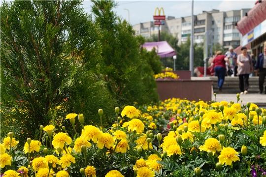 Подготовка к 550-летию столицы предприятиями сферы потребительского рынка и организациями района