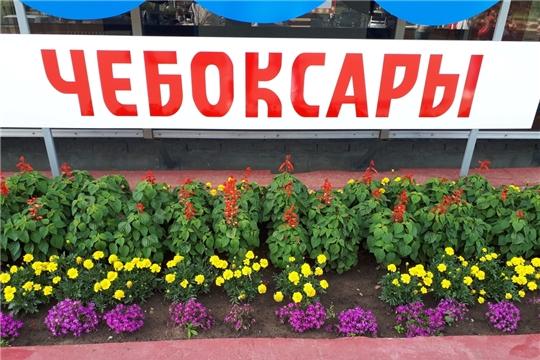 ТОСы Калининского района готовятся к празднованию 550-летия г.Чебоксары