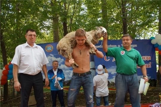 Чебоксарам - 550: в День города в Калининском районе разыграют живого барана