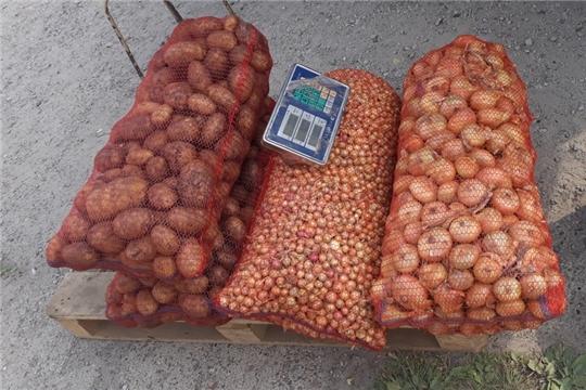 В Калининском районе продолжает работу месячник по продаже сельхозпродукции «Дары осени»