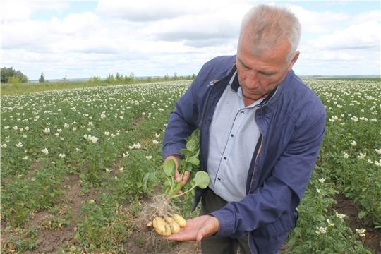 Заместитель главы администрации Козловского района - начальник отдела сельского хозяйства и экологии Сергей Утёмов посетил с рабочим визитом КФХ Козловского района