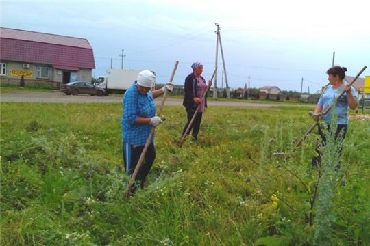 Экологический субботник по скосу сорной растительности на территории Еметкинского сельского поселения