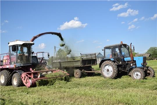 В Красночетайском районе приступили к косовице многолетних трав