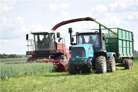 Летняя страда на полях Красночетайского района