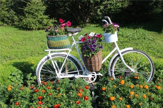 Благоустройство: цветочная композиция из старого велосипеда
