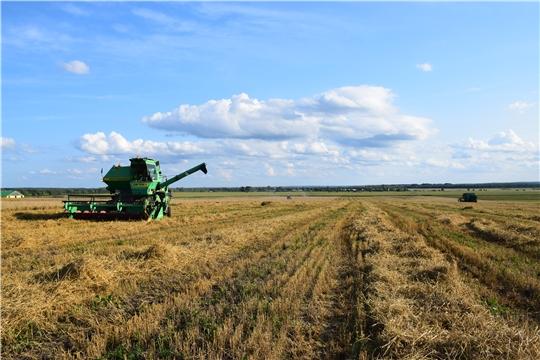 Очередной день приносит новые вести с хлебных полей Красночетайского района