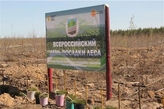 27 апреля пройдет Всероссийский день посадки леса (НТРК)