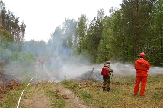 В лесничествах Чувашии продолжаются тактико-специальные учения по тушению лесных пожаров