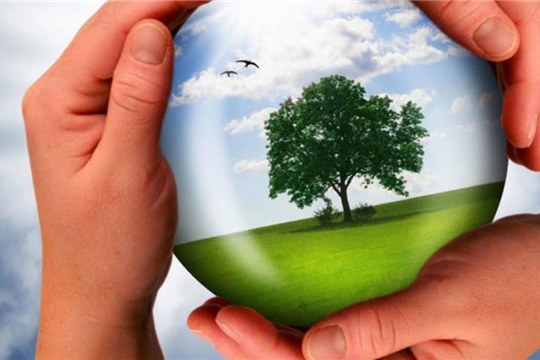 Объявлен республиканский конкурс на разработку эмблем экологической направленности