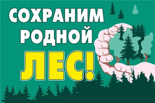 Минприроды Чувашии призывает всех жителей быть предельно внимательными при посещении леса
